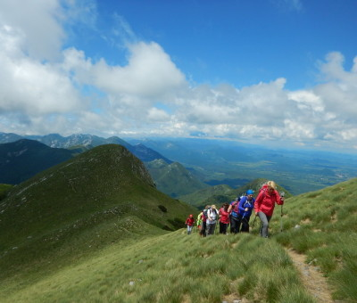 Visočica, Velebit mountain, June 2016